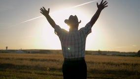 De oude landbouwer heft omhoog zijn handen naar de zon op die zich op een gebied van tarwe bevinden stock video