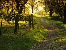 De oude Landweg van het Land Stock Afbeeldingen