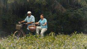 De oude man en de oude vrouw hebben een goede tijd berijdend op fietsen in het park stock footage