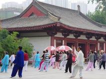 De oude man in tai chi Royalty-vrije Stock Foto's
