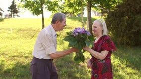 De oude mens geeft bloemen aan zijn geliefde vrouw in park stock footage