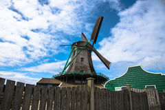 De oude molens van het tulpengebied adnd in netherland Stock Foto's