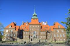 De oude mooie bouw in Zweden stock fotografie