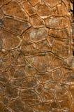 De oude Muur van de Rots Stock Foto