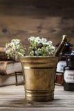 De oude natuurlijke geneeskunde, de kruiden en de geneesmiddelen Stock Afbeelding