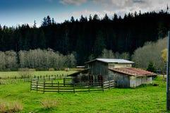De oude plattelander verlaten schuur met drijft bijeen en weidt royalty-vrije stock afbeeldingen