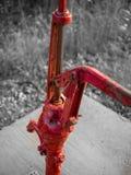 De oude pompen sterven nooit Stock Foto