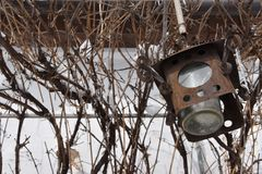 De oude roestige lantaarn hangt op de dunne takken in de winter stock afbeeldingen