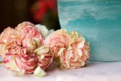 De oude rozen van Pierre de ronsard dichtbij de kruik van het aquamarijnglas Royalty-vrije Stock Afbeelding