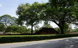 De oude ruïnes in het park Stock Foto