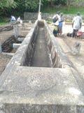 De oude ruïnes van Sri Lanka Royalty-vrije Stock Foto's