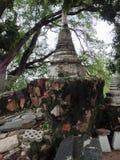 De oude stad van Ayutthaya Stock Afbeeldingen
