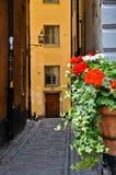 De Oude Stad van Stockholm Stock Fotografie