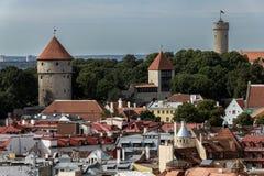 De Oude Stad van Tallinn Stock Afbeelding
