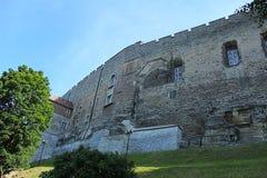 De Oude Stad van Tallinn Royalty-vrije Stock Afbeelding
