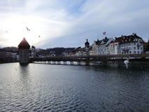De oude stadsbrug en de lokale zeemeeuw Stock Foto's
