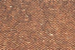 De oude tegels van het dakspaandak Stock Afbeeldingen