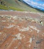 De oude tekeningen op rotsen Altai Stock Afbeelding