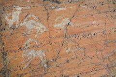 De oude tekeningen op rotsen Altai Stock Fotografie