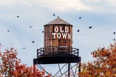 De oude toren van het stadswater Stock Foto's