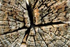 De oude uitstekende houten achtergrond van de vernauwingstextuur Stock Foto's