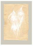 De oude veren van de stijlpauw Royalty-vrije Stock Afbeelding