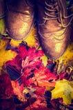 De oude versleten schoenen op kleurrijk de herfstgebladerte, sluiten omhoog, retro Stock Afbeelding