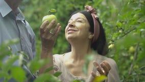 De oude vrouw biedt een appel aan een volwassen man aan stock footage