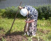 De oude vrouw met bijl neemt kat Royalty-vrije Stock Foto's