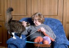 De oude vrouw strijkt een kat Royalty-vrije Stock Foto's