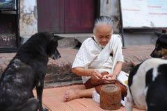 De oude vrouwen geven voedsel aan hond Royalty-vrije Stock Foto