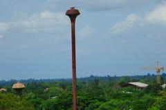 De oude watertoren in het park Stock Afbeelding