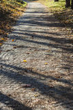 De oude weg van de steenkubus met gebladerte in de herfst Stock Foto's