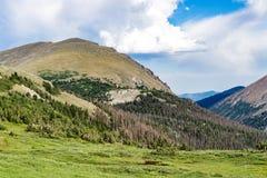De oude weg van Fall River - rotsachtig berg nationaal park Colorado Royalty-vrije Stock Foto's