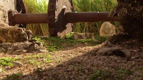 De oude zitting van het toestelwiel naast de 18de eeuwaquaduct Montego Bay, Jamaïca stock video