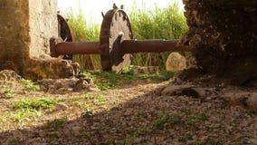 De oude zitting van het toestelwiel naast de 18de eeuwaquaduct Montego Bay, Jamaïca stock videobeelden