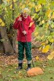 De oudere man maakt bladeren met een hark schoon Royalty-vrije Stock Fotografie