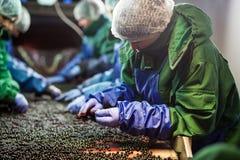 04 de outubro de 2017 - Vinnitsa, Ucrânia Povos no trabalho no prote Foto de Stock