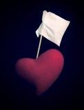 De Overgave van het hart Stock Foto's