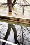 De overstromende van de bankenoorzaken van de Zegenrivier schade Parijs Royalty-vrije Stock Foto's