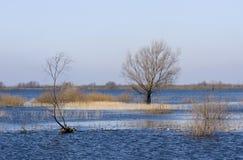 De overstroming van de rivier Royalty-vrije Stock Afbeelding