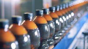 De overvloed van plastic die flessen met bier worden gevuld beweegt zich langs de transportband stock videobeelden
