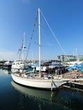 De overvolle Jax-cocobar bij het Jacht van Singapore toont 2013 Royalty-vrije Stock Afbeeldingen