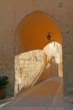 De overwelfde galerij van het kalksteen Stock Foto's