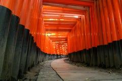 De Overwelfde galerij van Inari Torii van Fushimi Royalty-vrije Stock Fotografie