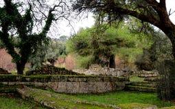 De overwoekerde oude ruïnes in Olympia Greece met mos behandelden rotsen en de klimop behandelde bomen Stock Foto