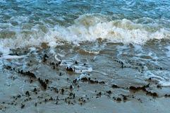 De overzeese golf, stormt op zee, golven op zee omwikkelend op de kust, vrachtschip Royalty-vrije Stock Afbeeldingen