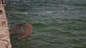 De overzeese golfbreker wordt gewassen door golven in langzame motie stock videobeelden