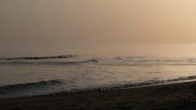 De overzeese golven van het zandstrand en bij zonnige dag stock footage