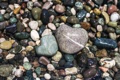 De overzeese kiezelstenen van verschillende grootte worden gewassen met water Royalty-vrije Stock Foto's